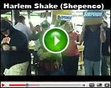 Harlem Shake Shepenco (asi/86850)