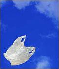 Michigan Outlaws Plastic Bag Bans